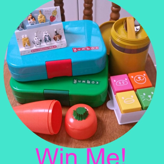 Giveaway!! Win A Yumbox Lunch Box And More!! NOW CLOSED
