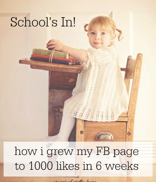 How I Increased My Facebook Page To 1000 Likes In 6 Weeks