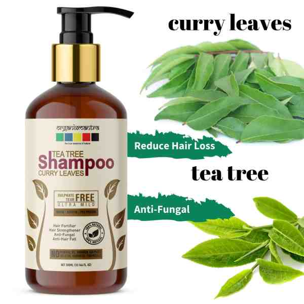Reduces Hair Loss Anti Fungal Shampoo