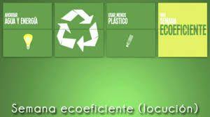 ecologia-oficina-y-hogar1