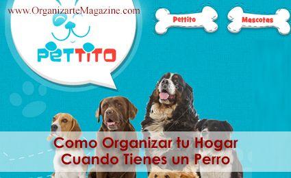 vender-perros-colombia