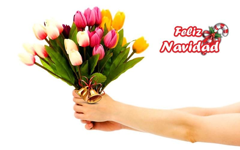 navidad para amistades regalos económico regalar amigos flores