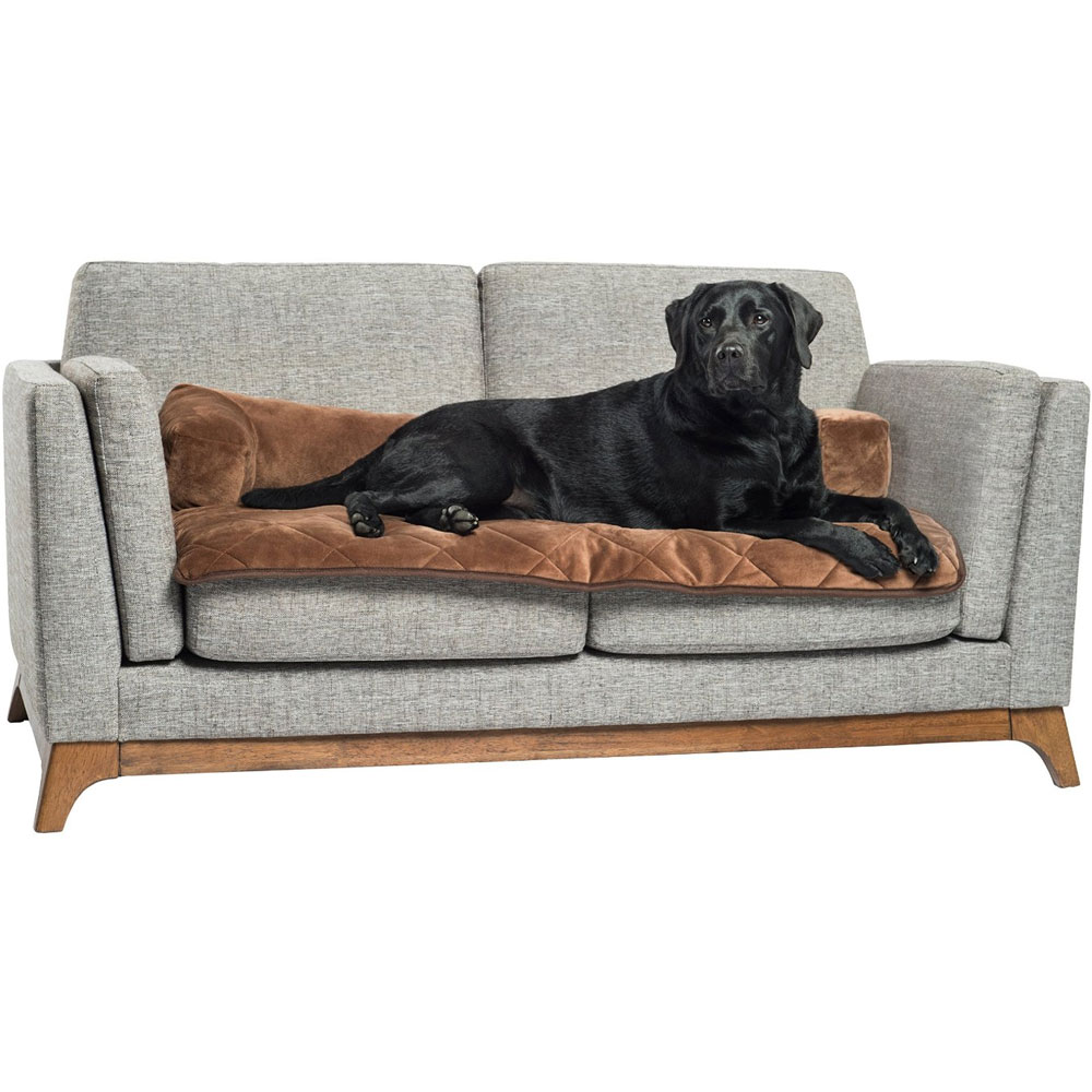 Dog Couch Protector in Pet Beds
