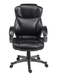 Rolling Executive Chair in Office Chairs