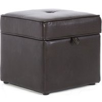 Faux Leather Storage Ottoman in Ottomans