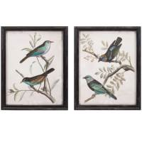Framed Bird Prints (Set of 2) in Wall Decor