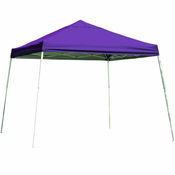 Shelterlogic 12 X Portable Canopy - Slanted Leg In Canopies
