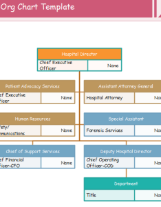 Hospital org chart template also examples charting rh orgcharting