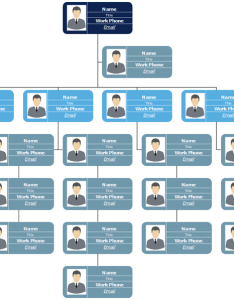 More hierarchical organizational chart examples  templates marketing org template also advantages and disadvantages of organisational rh orgcharting