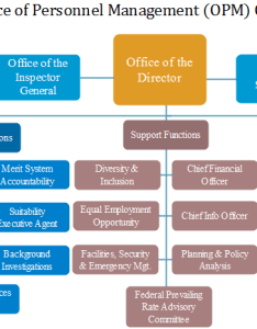 Feel free to check out the overall framework of agency in below opm org chart also   office personnel management charting rh orgcharting