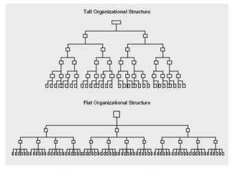 A Tall vs. Flat Organizational Structure