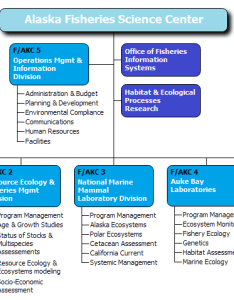 Science center this org chart also examples from orgchartpro rh