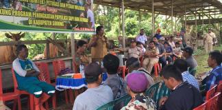 Bimtek Petugas dan Petani Milenial Sorong, Dukung Peningkatan Populasi Sapi dan Kerbau