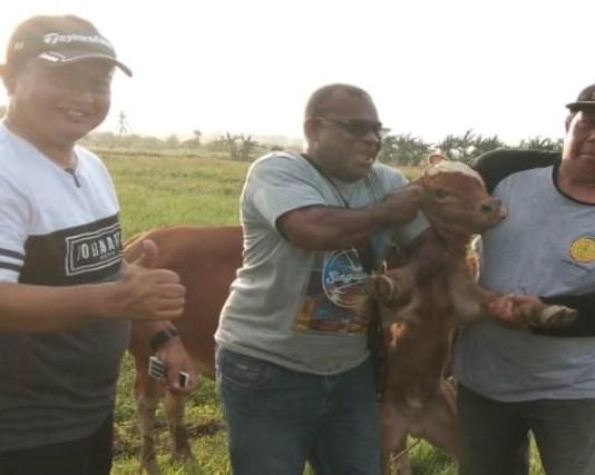 Lahan Memadai, Papua Barat Punya Peluang Kembangkan Program Sikomandan