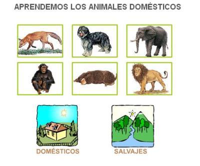 LOS ANIMALES DOMESTICOS Y DE GRANJA ANAYA