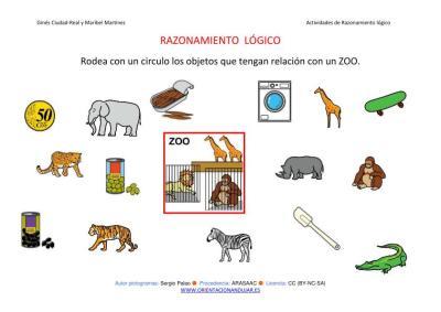 RAZONAMIENTO  LÓGICO categorizar y agrupar  ZOO  COLOR IMAGEN