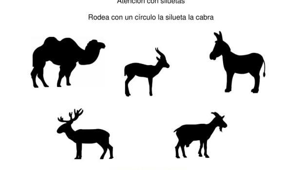 siluetas animales domesticos cabra