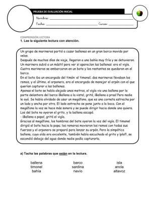 Evaluación Inicial Lengua 5º IMAGEN
