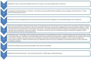 Fases para el estudio de caso
