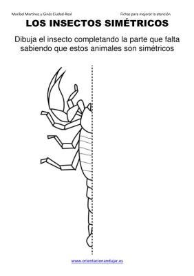 los insectos simetricos trabajamos  lateralidad  izq-dcha ORIENTACION ANDUJAR 2