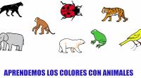Os dejamos nuestro nuevo material en nuestro canal de de YOUTUBE para aprender los colores con estos divertidos animales.  NUESTRO OTRO VIDEO PARA TRABAJAR LOS COLORES descargate estos materiales […]