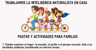 TRABAJAMOS LA INTELIGENCIA NATURALISTA EN CASA PAUTAS Y ACTIVIDADES PARA FAMILIAS