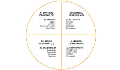 Tes DE ESTILOS DE APRENDIZAJE  Modelo de Cuadrantes cerebrales Test alumnos y docentes