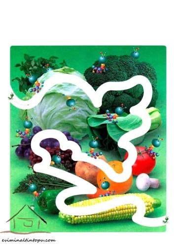 super laberintos coloridos para los mas peques (2)