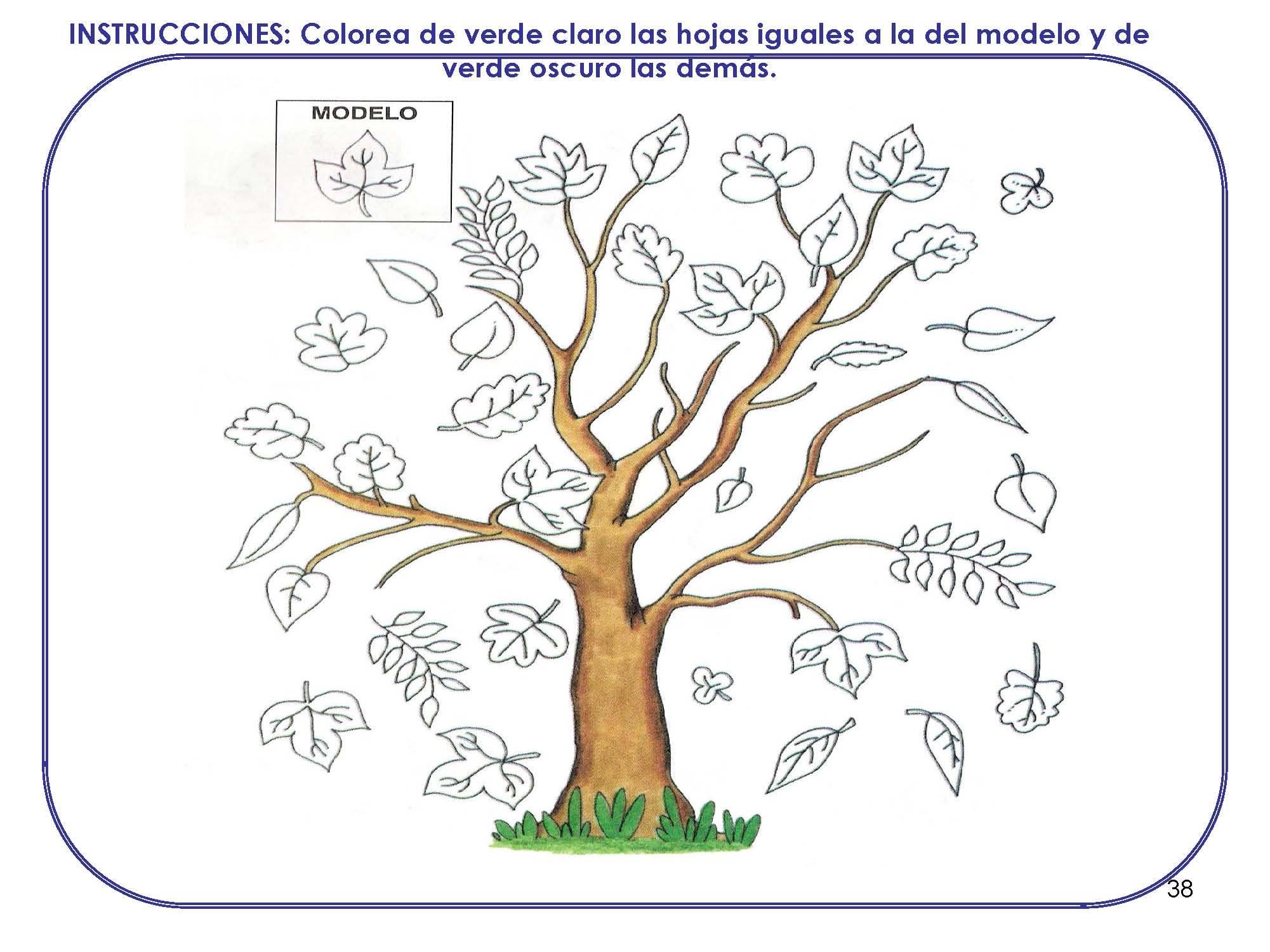 cuaderno-maduracion_pagina_38