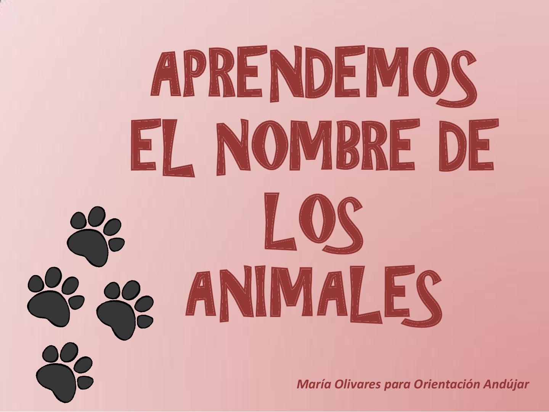 animales-espanol-1-001