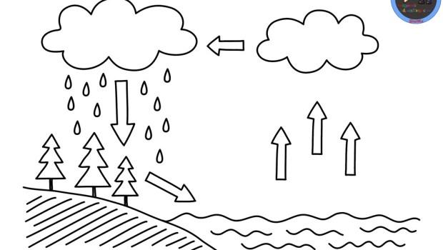 ciclos-del-agua-para-colorear-1 - Orientación Andújar - Recursos ...