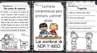 Lecturas comprensivas para Primaria y primer grado. Las aventuras de Noa y Hugo II Las comprensión lectora es la capacidad de entender lo que se lee, tanto en referencia al […]