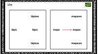 Sencilla actividad para trabajar el singular y el plura.