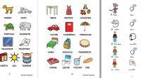 Material para trabajar la lectura global compuesto por las siguientes cartillas: – Cartilla para trabajar la lectura global a partir de pictogramas aislados distribuidos por categorías y de frases sencillas […]