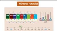 El conjunto de los números naturales se representa por la letra Explicaciones y ejemplos de números naturales – 1, y está formado por: N = {0, 1, 2, 3, 4, […]