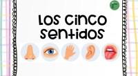 «Sentido» es la capacidad para percibir estímulos internos y externos mediante el empleo de órganos específicos. Se considera que los seres humanos contamos con cinco sentidos: oído, vista, olfato, tacto […]