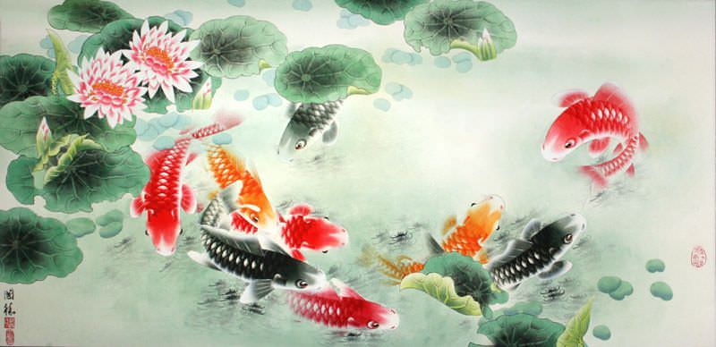 Chinese Calligraphy Wallpaper Hd Koi Fish And Lotus Flower Colorful Asian Art Painting