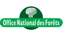 emploi ONF méties forestiers