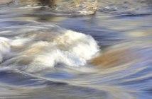 chargé de mission eau milieux aquatiques