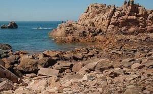Formation environnement littoral en Bretagne