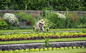formation jardinier paysagiste