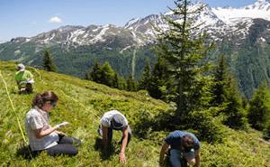 Recherche citoyenne sur les écosystèmes montagnards