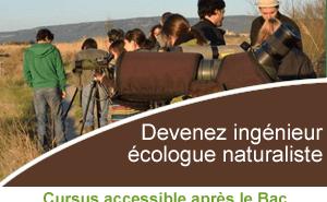 Cursus Master Ingénierie : Ingénieur Écologue Naturaliste