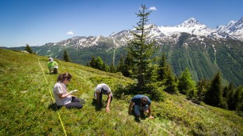 Recherche citoyenne CREA Mont-Blanc
