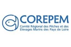 Stage Corepem, pêche et milieu marin