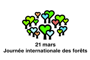 journée internationale des forets