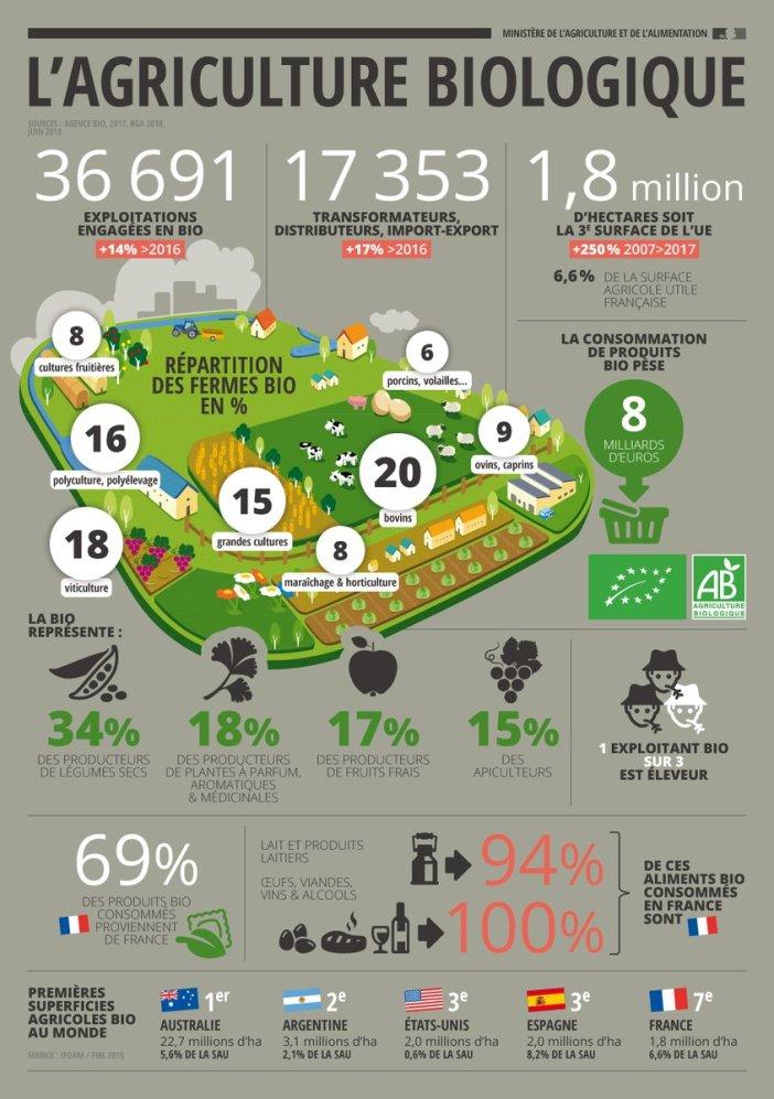 infographie emploi en agriculture biologique