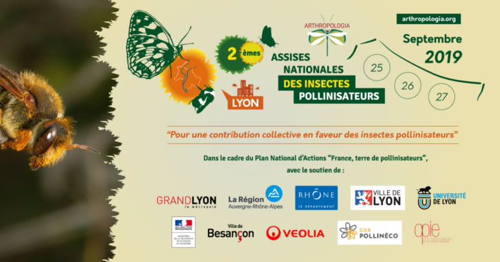 assises Insectes pollinisateurs
