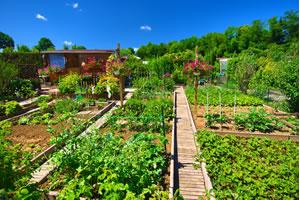 Fermes agroécologiques urbaines et périurbaines