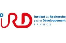 recrutement IRD